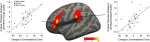 graph depicting cortical changes